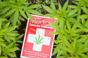 The Medical Cannabis Guidebook, wirtten by Jeff ditchfield and Mel Thomas