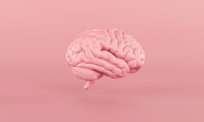 Brain study: A pink brain in the middle of a pink background