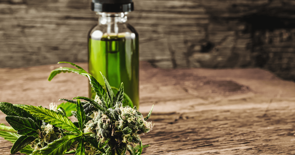 Endocannabinoid system: Cannabis leaf and a bottle of green hemp oil on a wooden surface