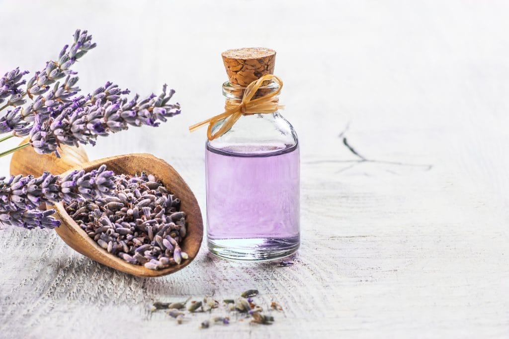 Terpenes: A wooden scoop of lavender next to a bottle of purple oil with a cork top