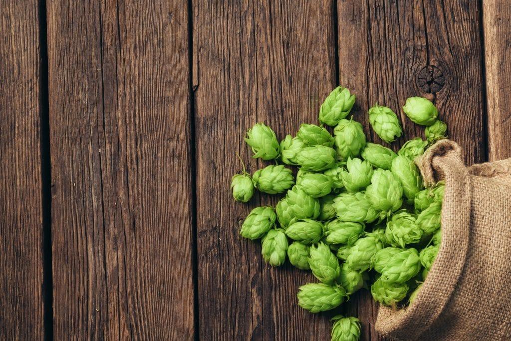 a bag of green hops spilled across a brown wooden floor