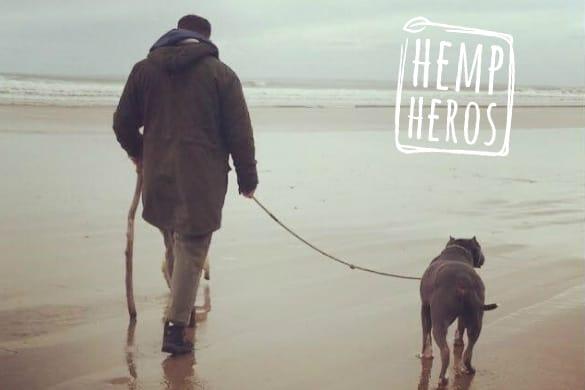 Welsh: A man walking a dog on a lead across a beach