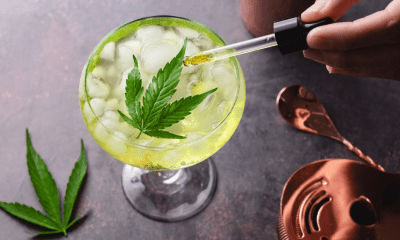 CBD and alcohol: A cocktail glass with a yellow liquid sits next to cocktail making eupiment. A hand reaches over and squeezes CBD oil from a dropper into the liquid which is topped by a cannabis leaf