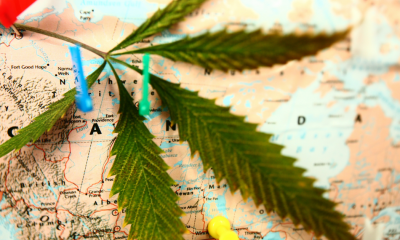 Accomodation: A cannabis leaf lies on top of a map of Canada. The map has pins in it where people have mapped their plans to travel