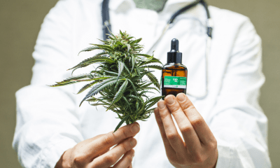 Ireland: A doctor in a white lab coat with out stretched hands holding one cannabis leaf and another holding a bottle of oil