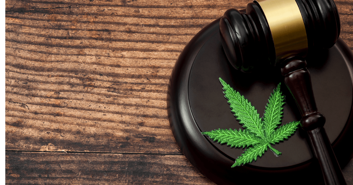 Celebrities: A judges gavel on a wooden table next to a green cannabis leaf