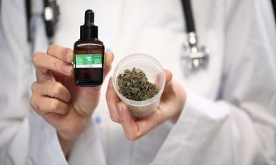 medical cannabis patients