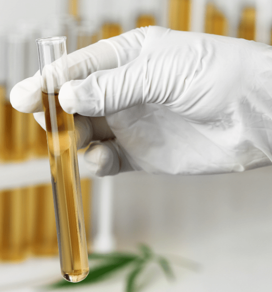 Seizure: A row of test tubes containing CBGA oil with a doctors white gloved hand holding one up to the light