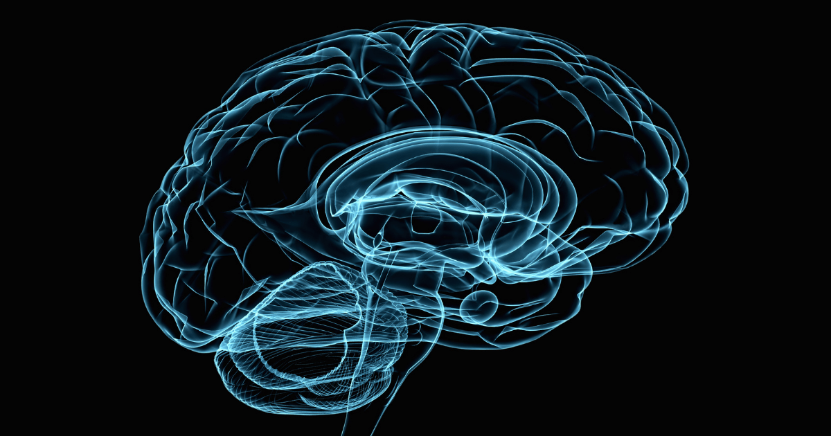 Seizures: A black and blue x-ray of a brain on a black background